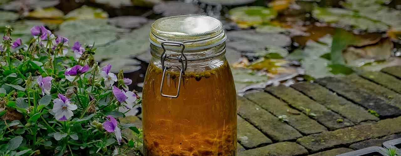 honey-beer