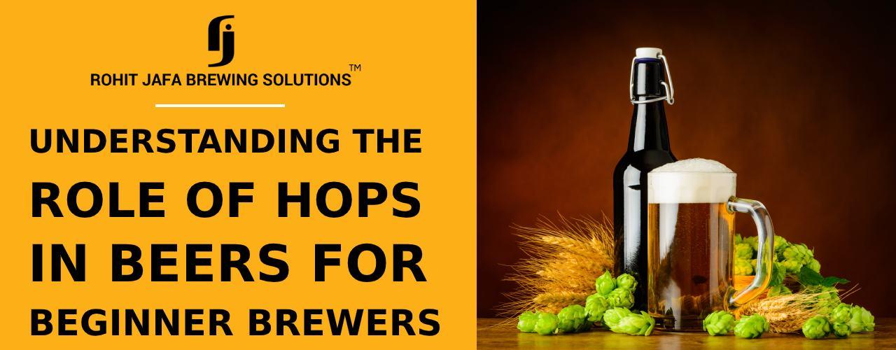 https://www.microbreweryindia.com/wp-content/uploads/2020/09/beer-fermenters-in-india.jpg
